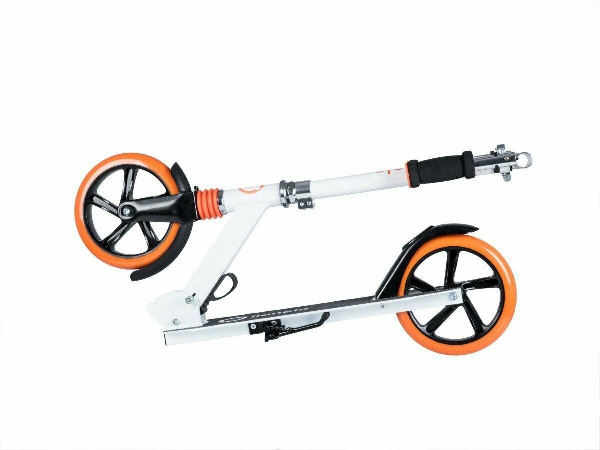 Roller Luca