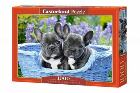 Puzzle Castorland 1000 Teile FRENCH BULLDOG PUPPIES